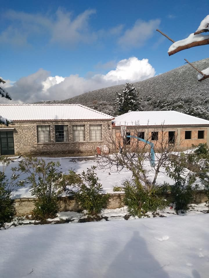 image snow3 03 01 2019