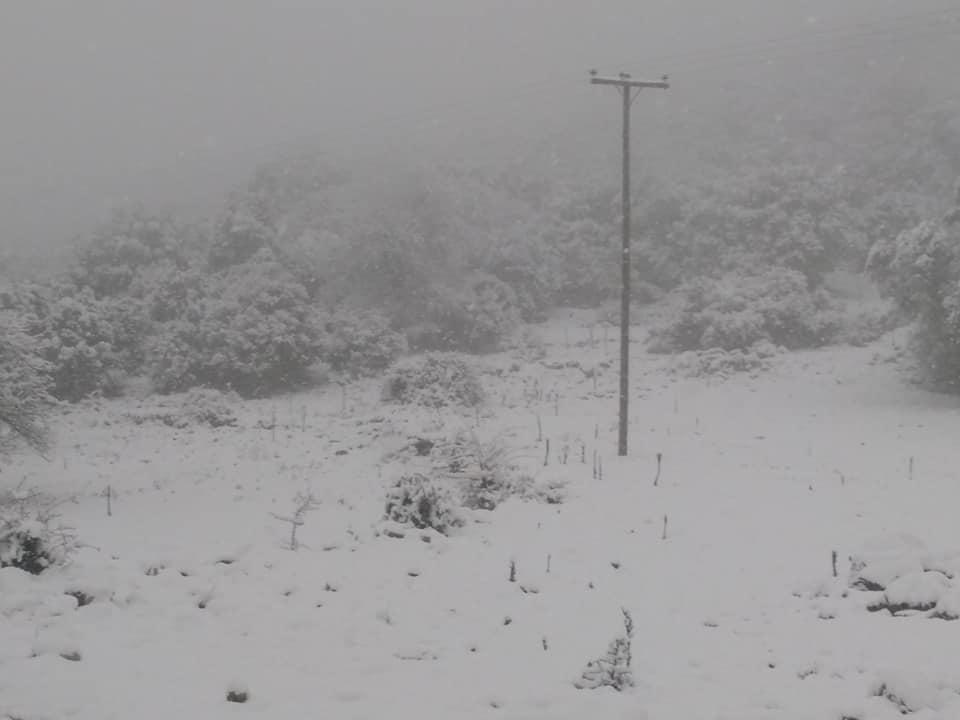 image snow5 03 01 2019