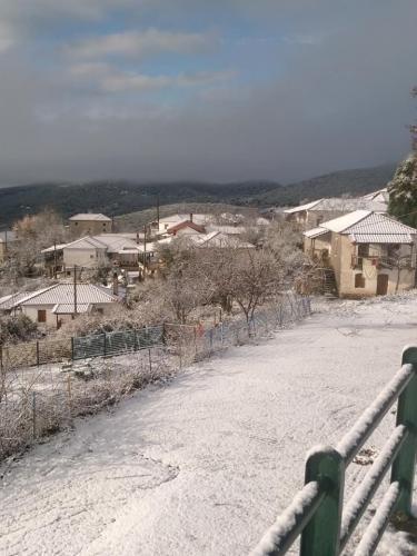 image snow10 03 01 2019