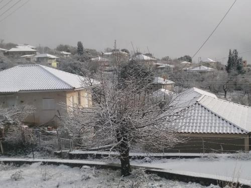 image snow11 03 01 2019