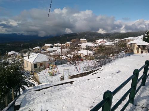 image snow2 03 01 2019