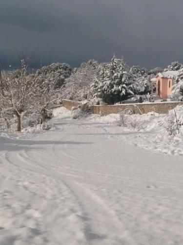 image snow6 03 01 2019