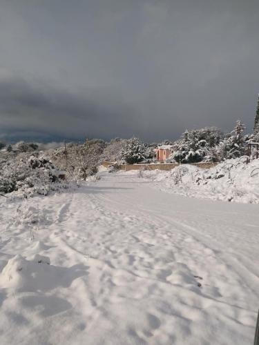 image snow7 03 01 2019