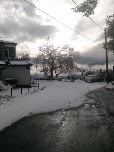 image snow9 03 01 2019